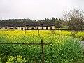 婺源映像(Wuyuan)-19 - panoramio.jpg