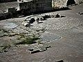 敘利亞騎士堡8705.jpg