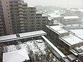 深大寺レジデンス - panoramio (1).jpg