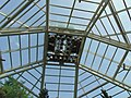 -gallery- conservatory roof- Conservatory roof of Brooklyn Botanic .jpg