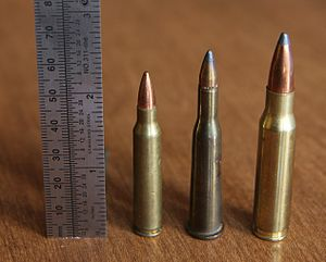 5.6×52mmR - .22 Savage (center) with .223 Rem (left) and .308 Win (right).