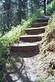 01-07-21, klemgard park trail - panoramio.jpg