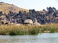 017 Reeds Lake Titicaca Peru 3065 (14995277428).jpg