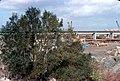 046R15261078 Reichsbrücke, Standpunkt Überschwemmungsgebiet, Ostseite, Ersatzbrücke.jpg