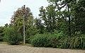 12-101-5005 Ботанічний сад Дніпропетровськкого національного університету.jpg