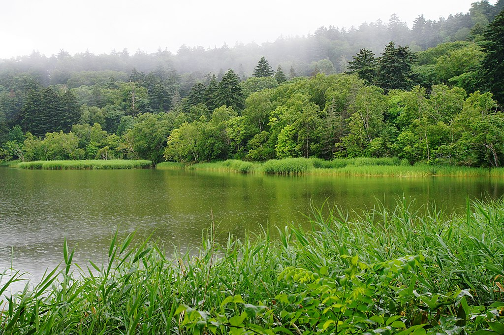 130727 Himenuma Rishiri Island Hokkaido Japan01s3