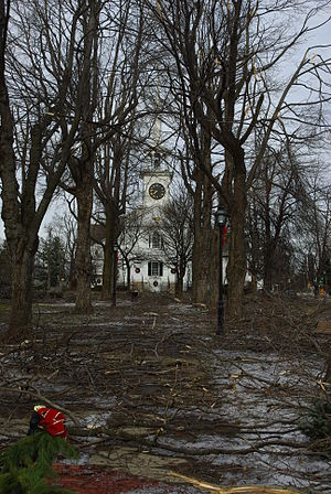 December 2008 Northeastern United States ice storm - Image: 20081214 shrewsbury ice storm damage looking towards church 1