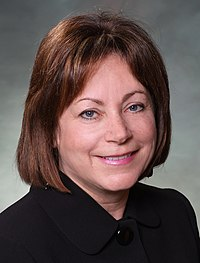 2010 Official Picture of Representative Dianne Primavera (cropped).jpg