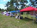 2015 South GA Pride Festival 4.JPG