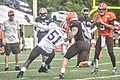 2016 Cleveland Browns Training Camp (28074858254).jpg