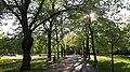 20200502 175410 Park Poniatowskiego w Łodzi May 2020.jpg