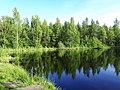 2181. Lake Karasyovoe in the park Sosnovka.jpg