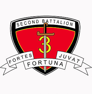 2nd Battalion, 3rd Marines - Older variation of the 2-3 insignia