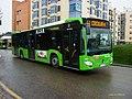 3631 ALSA - Flickr - antoniovera1.jpg