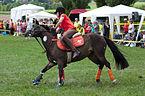 4ème manche du championnat suisse de Pony games 2013 - 25082013 - Laconnex 1.jpg