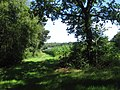 49847 Wielen, Germany - panoramio (8).jpg