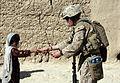 81 Millimeter Mortars Platoon battles Taliban through counter insurgency DVIDS342727.jpg