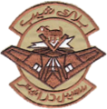 8th Expeditionary Fighter Squadron - OIF.png