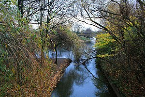 Markeaton Brook - Confluence of the Markeaton Brook with the River Derwent in Derby