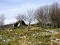 A boulder among trees near Bruntland - geograph.org.uk - 1033766.jpg