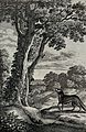 A fox is sitting under a tree looking up at a crow with a ch Wellcome V0022992.jpg