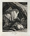 A weasel resting on a rock in a mountainous landscape. Etchi Wellcome V0021072EL.jpg
