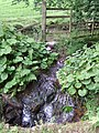 A wee waterfall - geograph.org.uk - 514986.jpg