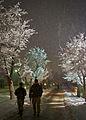 A winter's eve on Bagram Air Field 120123-A-ZU930-003.jpg