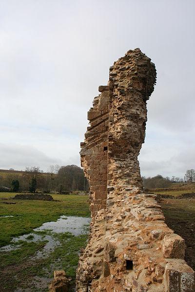 Contrefort de l'église (à droite) et rainure du toit du cloitre (à gauche). Vue des ruines de l'abbaye de savigny le vieux, manche, france
