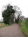 Access road to Rookery Farm - geograph.org.uk - 1117024.jpg