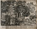 Adam and Eve with the serpent and other animals in the garde Wellcome V0034372.jpg