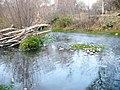 Aguas termales por la mañana - panoramio.jpg