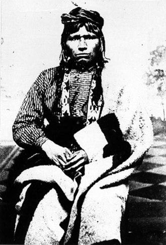 Old Abe - Image: Ahgamahwegezhig (Chief Sky)