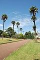 Albert Park - View - 01.jpg
