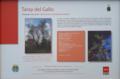 Alcalá de Henares (RPS 31-10-2019) Taray del Gallo, cartel.png