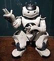 Aldebaran Robotics, robot nao, 2016 (ist. biorobotica polo sant'anna valdera).jpg