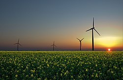 Renewable energy sources: wind , sun and biomass .