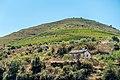 Alto Douro Vinhateiro DSC00214 (37170573401).jpg