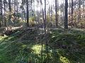 Am Mellensee Saalower Höllenbergweg 03.JPG