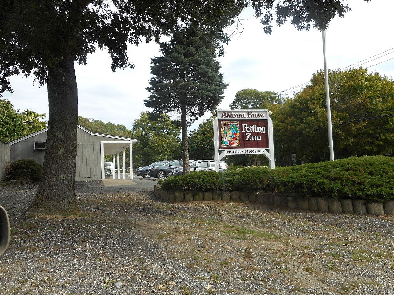 Free Petting Zoo In Long Island