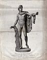 Apollo. Engraving by P. Fontana after L. Fineschi. Wellcome V0036048.jpg