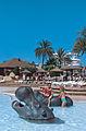 Aqualand s'Arenal hipopòtams.jpg