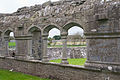 Ardfert Friary Cloister Walk South 2012 09 11.jpg