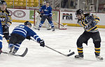 Army-Air Force Hockey Game 150109-F-UE455-650.jpg