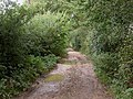 Arnewood, Agar's Lane - geograph.org.uk - 1480146.jpg