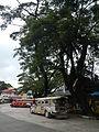 Asingan,Pangasinanjf7831 20.JPG