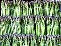 Asparagus image.jpg