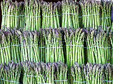 Bundled stalks of asparagus
