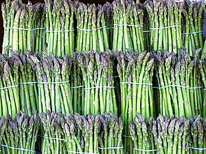 English: Asparagus bundled
