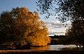 Autumn at Lake Tekapo NZ (26) (8670098281).jpg